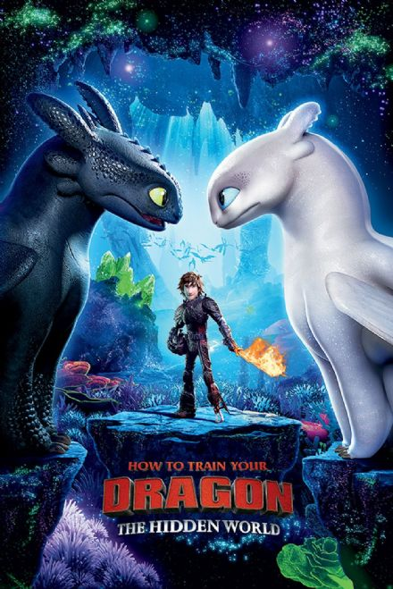 How to Train Your Dragon 3 61x91,5cm Movie Posters